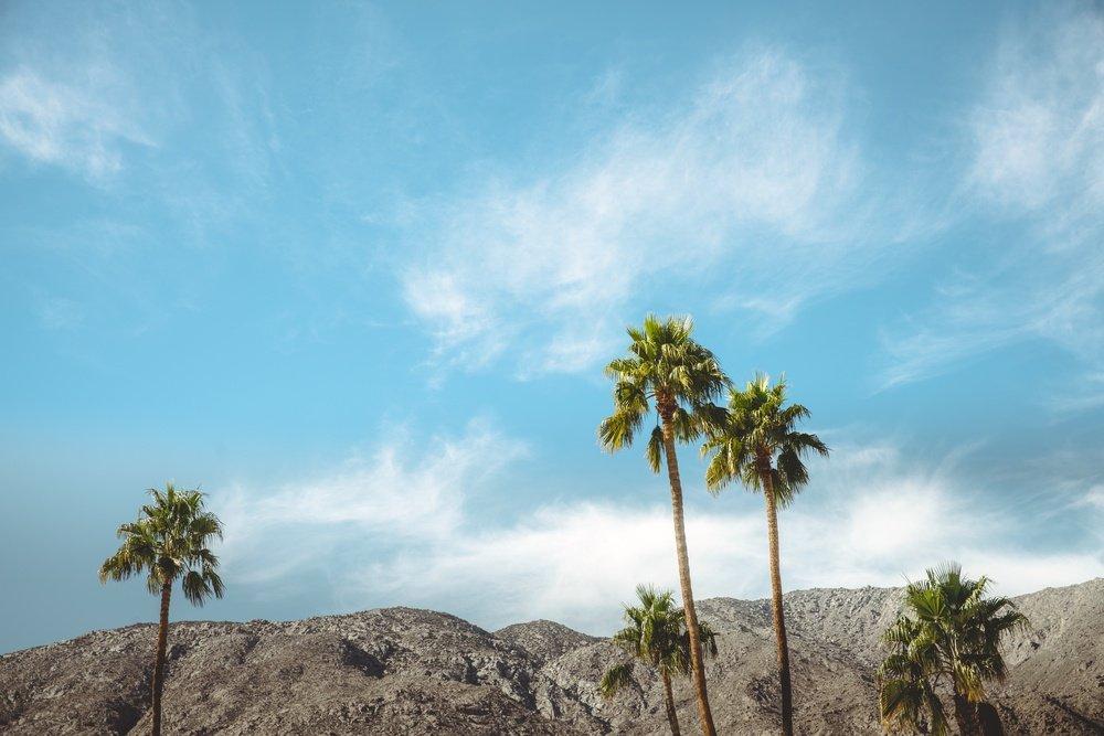 Coachella Grooming Essentials